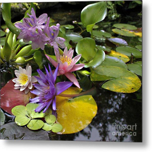 Lilies No. 7 Metal Print