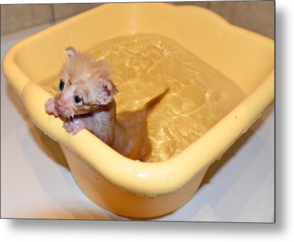 Little Bath Metal Print