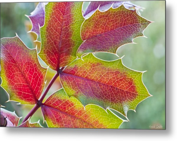 Little Bit Of Autumn Metal Print