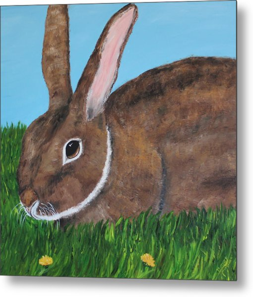 Little Brown Bunny Metal Print