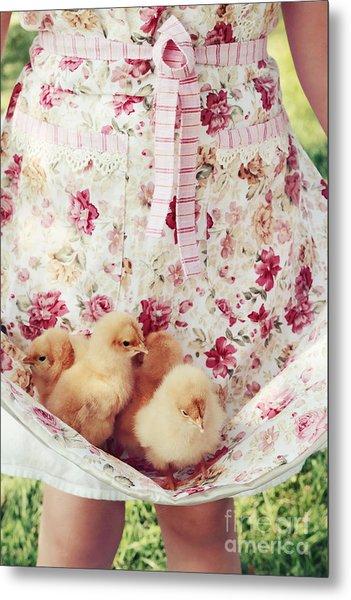 Little Chicks Metal Print