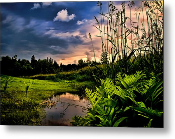 Little Cove Metal Print by Gary Smith