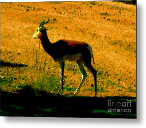 Little Deer Metal Print