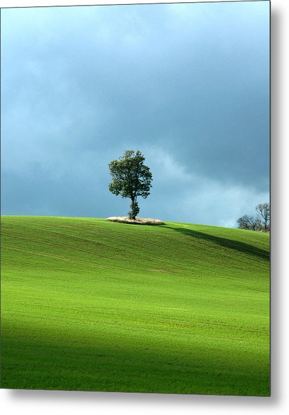 Lone Tree Sintinel Metal Print by Duncan Nelson