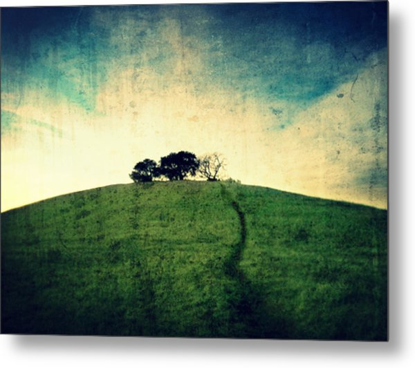 Metal Print featuring the photograph Lonely Hill by Matt Hanson