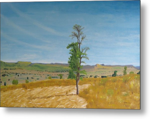 Lonely Tree In Africa Metal Print by Glenn Harden