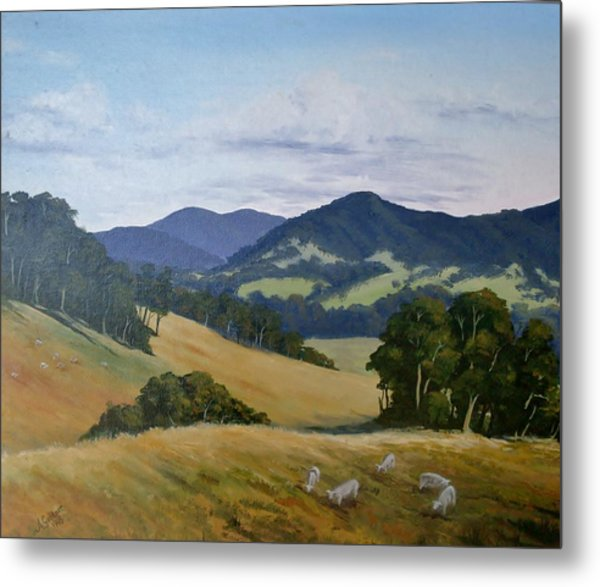 Looking South From Foxground Metal Print