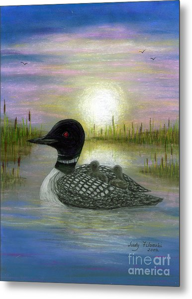Loon Babies On Mother's Back Judy Filarecki Metal Print