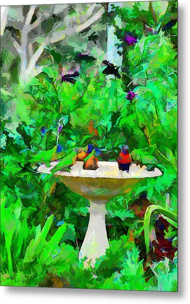 Lorikeets And Rosellas Metal Print