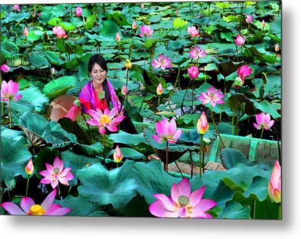 Lotus Season Metal Print