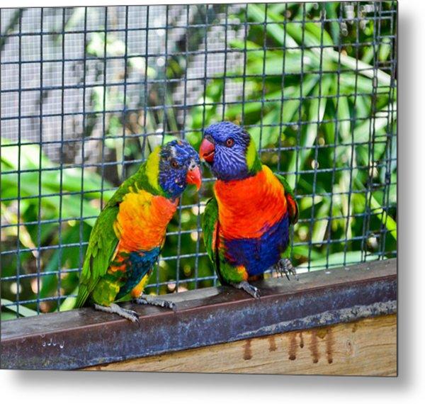 Love Birds Metal Print by Julio n Brenda JnB