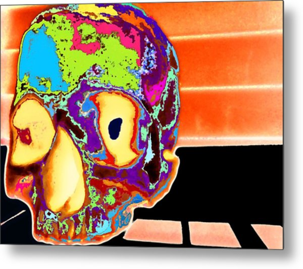 Lucy Metal Print by Rdr Creative