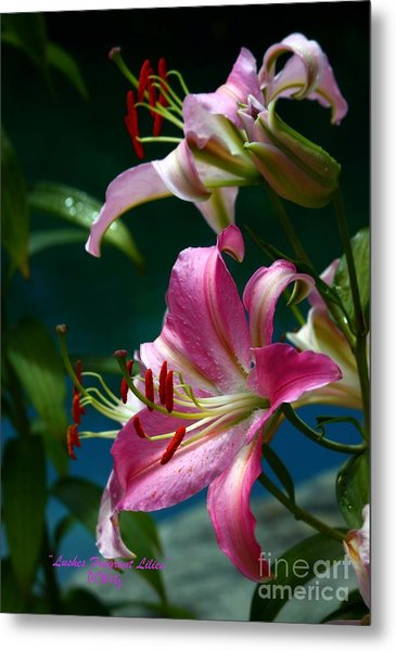 Lushes Fragrant Lilies Metal Print
