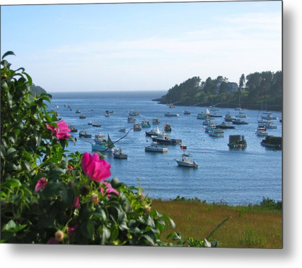 Mackerel Cove I Metal Print