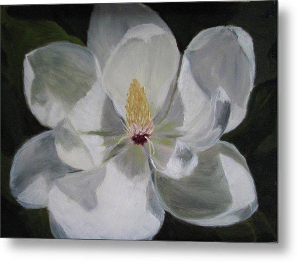 Magnolia Metal Print by Iris Nazario Dziadul
