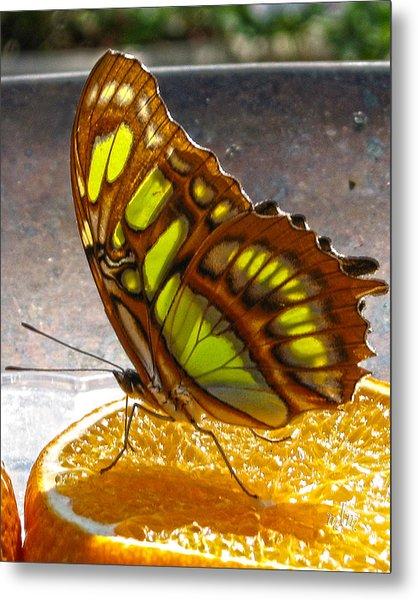 Malachite And Orange Metal Print