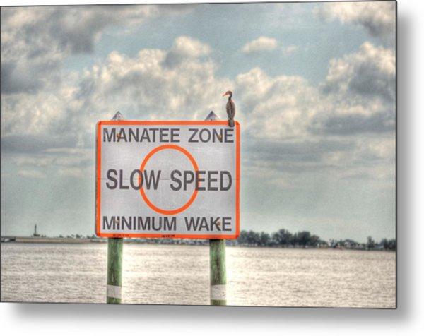 Manatee Zone Metal Print by Barry R Jones Jr