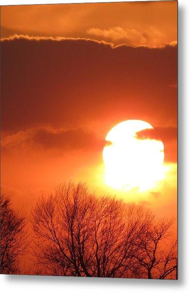 Mango Sunset Kansas Tree Silhouette Metal Print