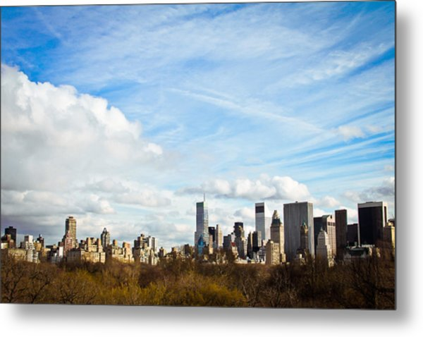 Manhattan Behing The Central Park Metal Print by Ezequiel Rodriguez Baudo
