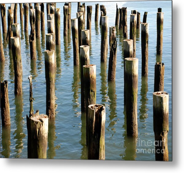 Marine Pilings Photograph by Anne Ferguson
