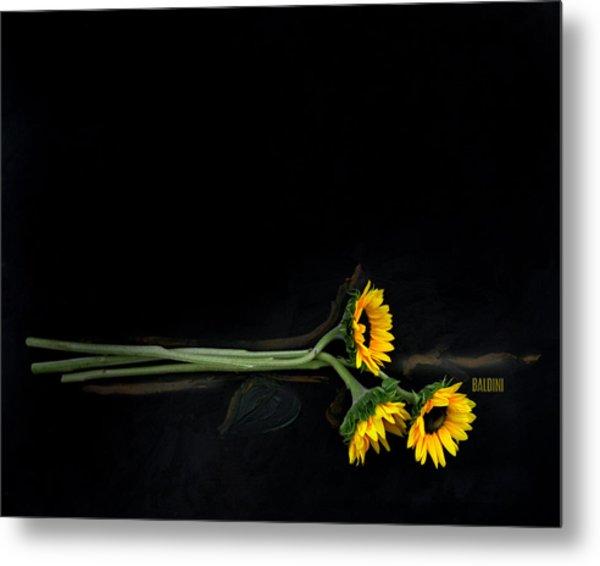 Master Sunflowers Metal Print