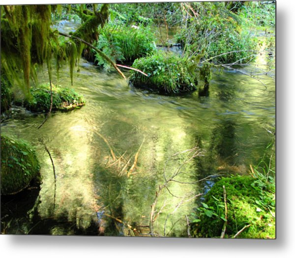 Mckenzie Pool Metal Print