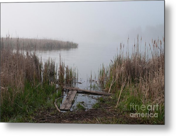 Mclaughlin Bay In The Fog At The Shore Metal Print by Gary Chapple