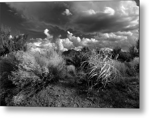Mesa Dreams Metal Print