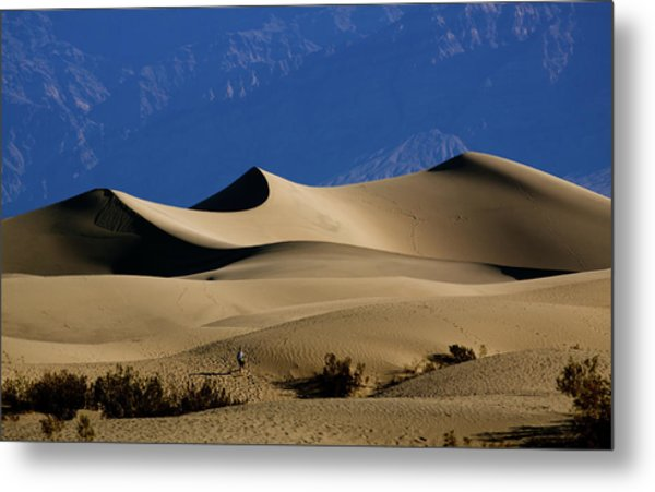Mesquite Dunes At Death Valley Metal Print
