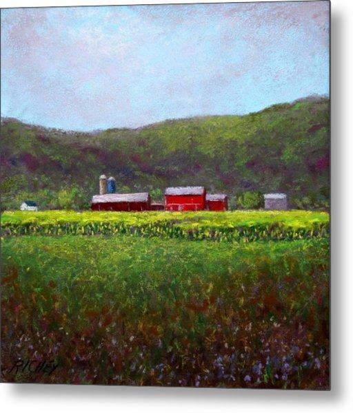Midsummer In Pennsylvania Metal Print by Bob Richey