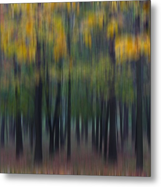 Midwest Autumn Metal Print