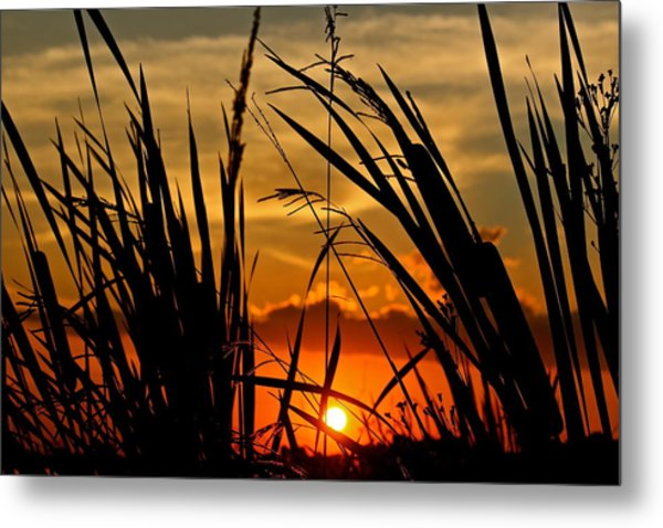 Mississippi Sunset At The Ross Barnett Reservoir 2 Metal Print