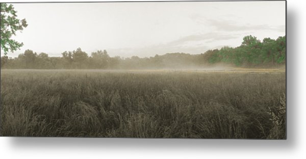 Misty Grounds Metal Print by Jan W Faul