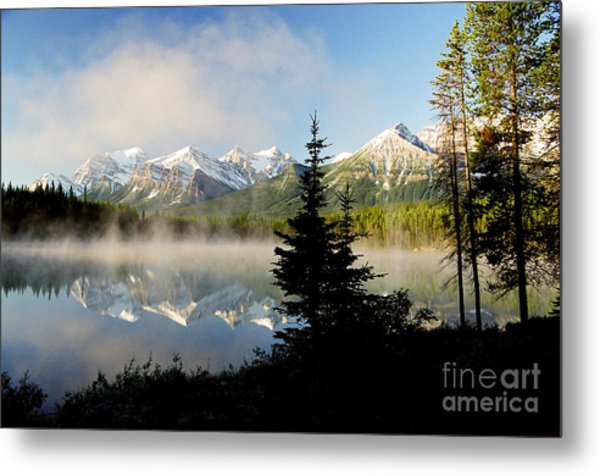 Misty Reflections Metal Print by Frank Townsley