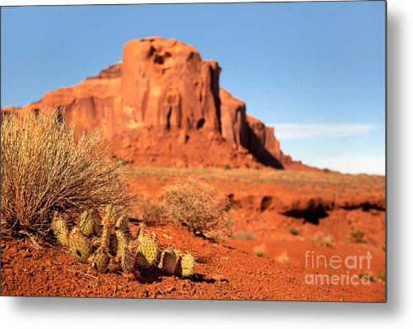 Monument Valley Cactus Metal Print