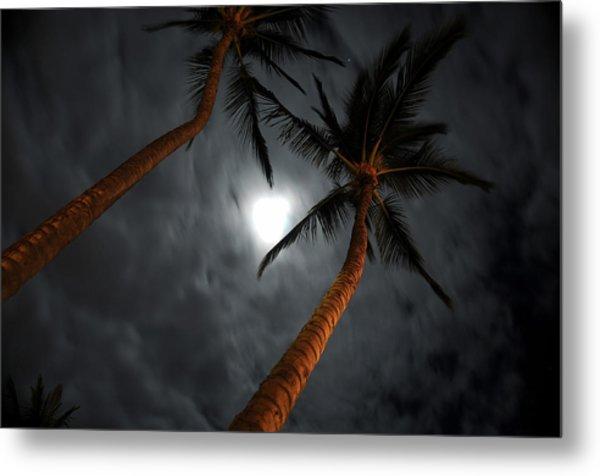 Moon And Palms Metal Print by George Crawford