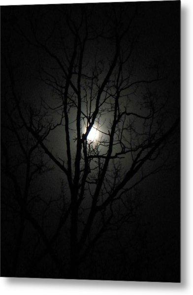 Moon Branches Metal Print by Jennifer Compton