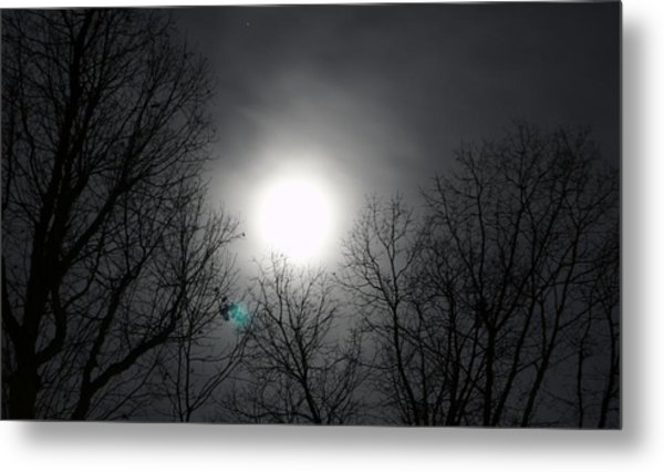 Moonlight Carolina Metal Print