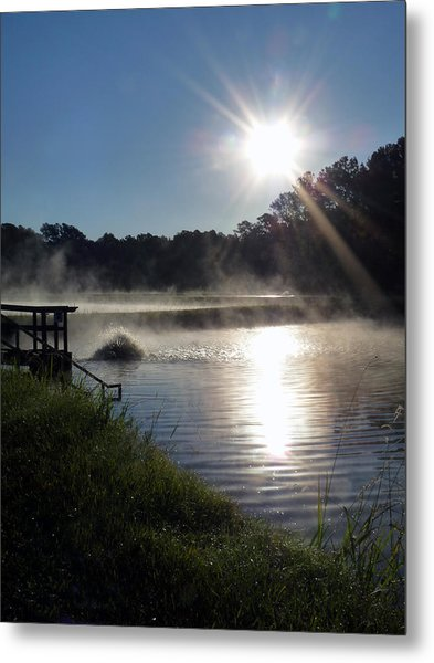 Morning At The Fish Hatchery Metal Print by Terry Eve Tanner