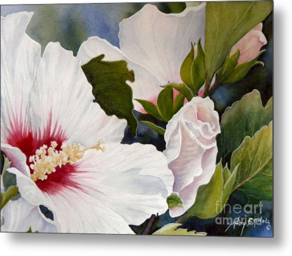 Morning Gift Sold Metal Print