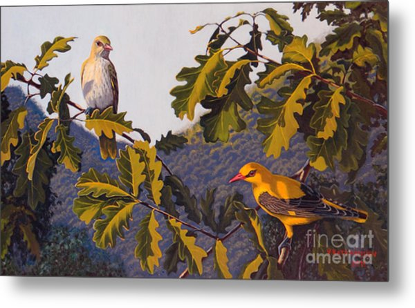 Morning In June Metal Print
