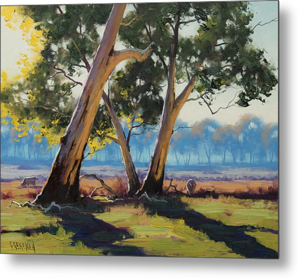 Morning Lit Gums Metal Print