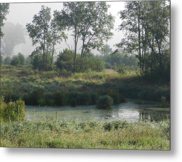 Morning Mist On Marsh Metal Print by Dennis Leatherman