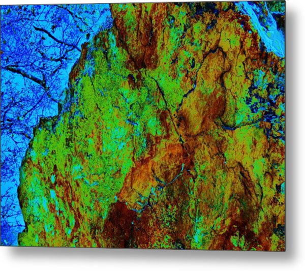 Moss On Rock Metal Print