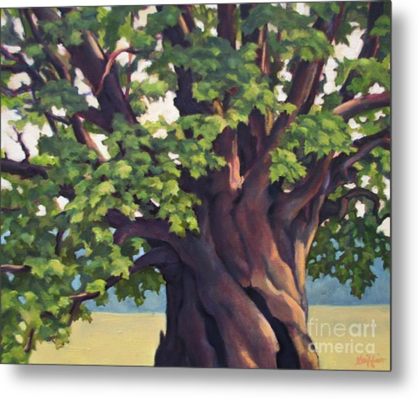Mother Maple Metal Print