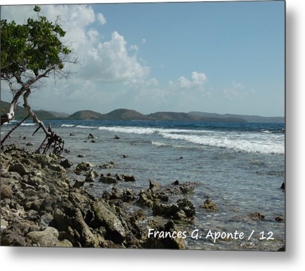 Mother Nature Metal Print by Frances G Aponte