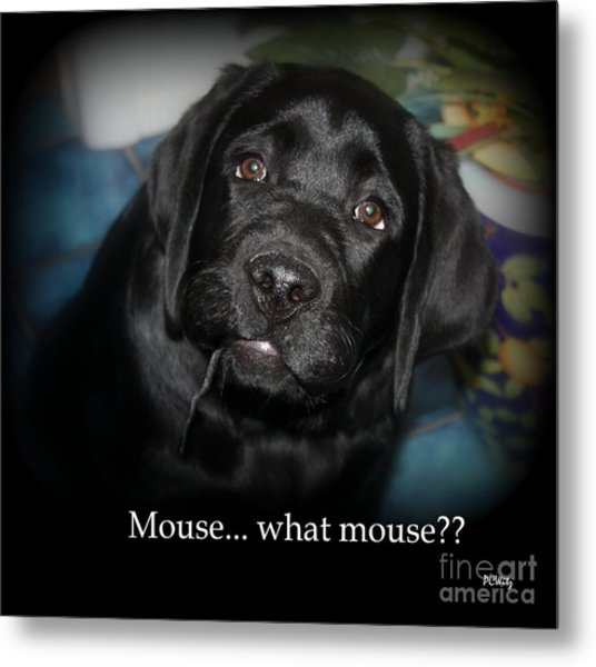 Mouse---what Mouse Metal Print