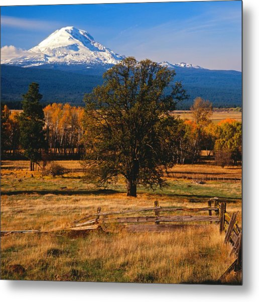 Mt. Adams Autumn Metal Print