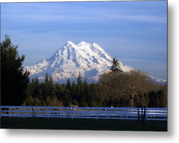 Mt. Rainier Fenced In Metal Print