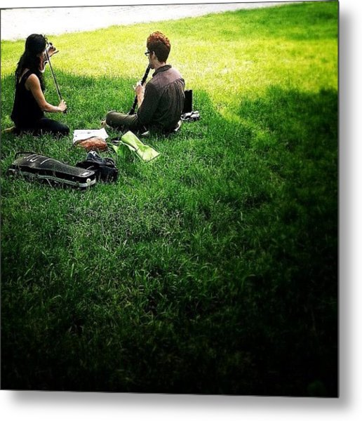 Music On A Grassy Knoll Metal Print